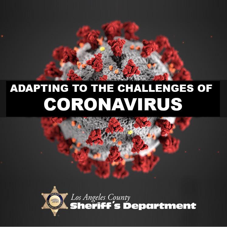 Microscopic image of the coronavirus.