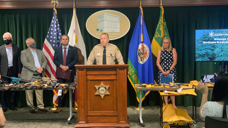 Picture of Sheriff at a wood podium with the Sheriff's star on it. Speaking to the media. Supervisor Bardger is on the sheriff's left, firther to his right are representatives from Antelope Valley and the D E A, Game and Wildlife and other orgaizations, On tables infront of the sheriff are laid out over 30 siezed automatic rifles and various hand guns that were also siezed from the operation.